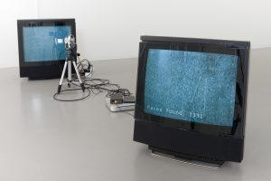 forest-of-fallen-trees-2014-video-sculpture-200-x-100-x-200-cm